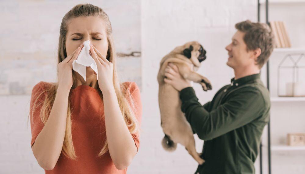 alergia a pelo